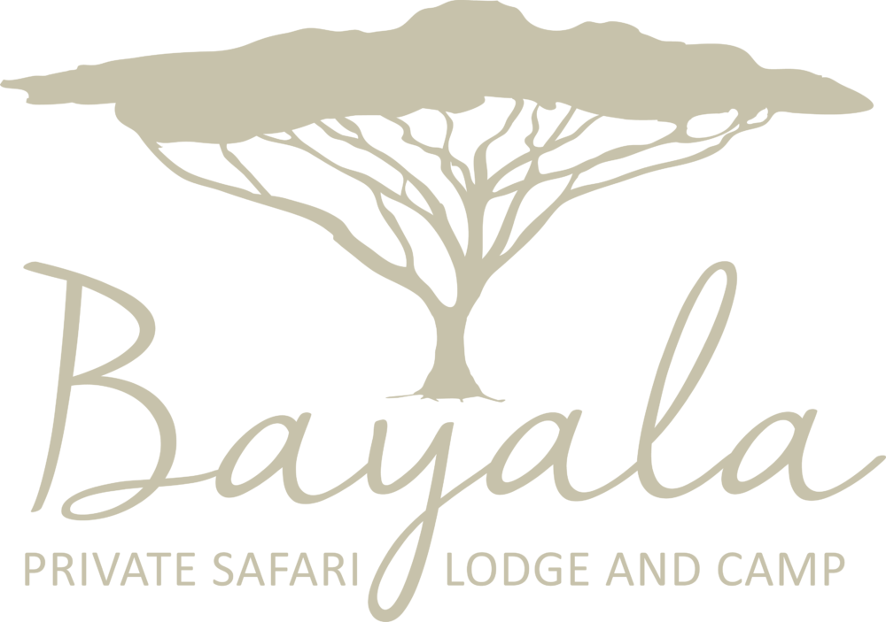 Bayala Private Safari Lodge